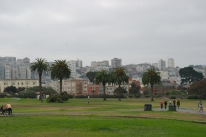 Love the contrast of the fog and the palm trees at Fort Mason